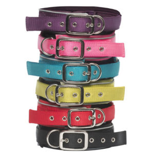 Pink Frog pet products dog collars