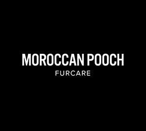 Moroccan Pooch